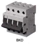 RKN|漏电断路器|LG