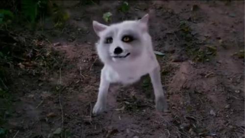 《古剑奇谭》中的特效狐狸.图片来源网络